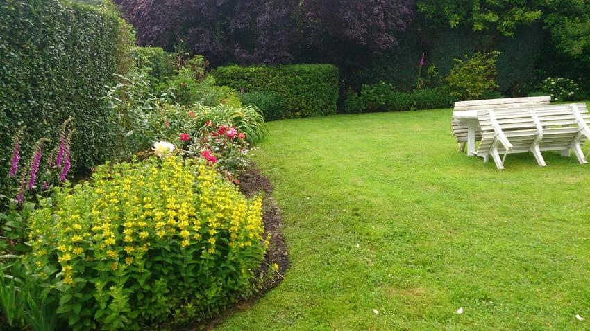 Entretenir son jardin plaisir vert jardinier paysagiste for Entretenir jardin