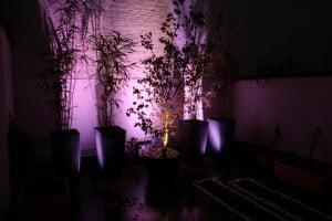 luminaires led extérieur mauve