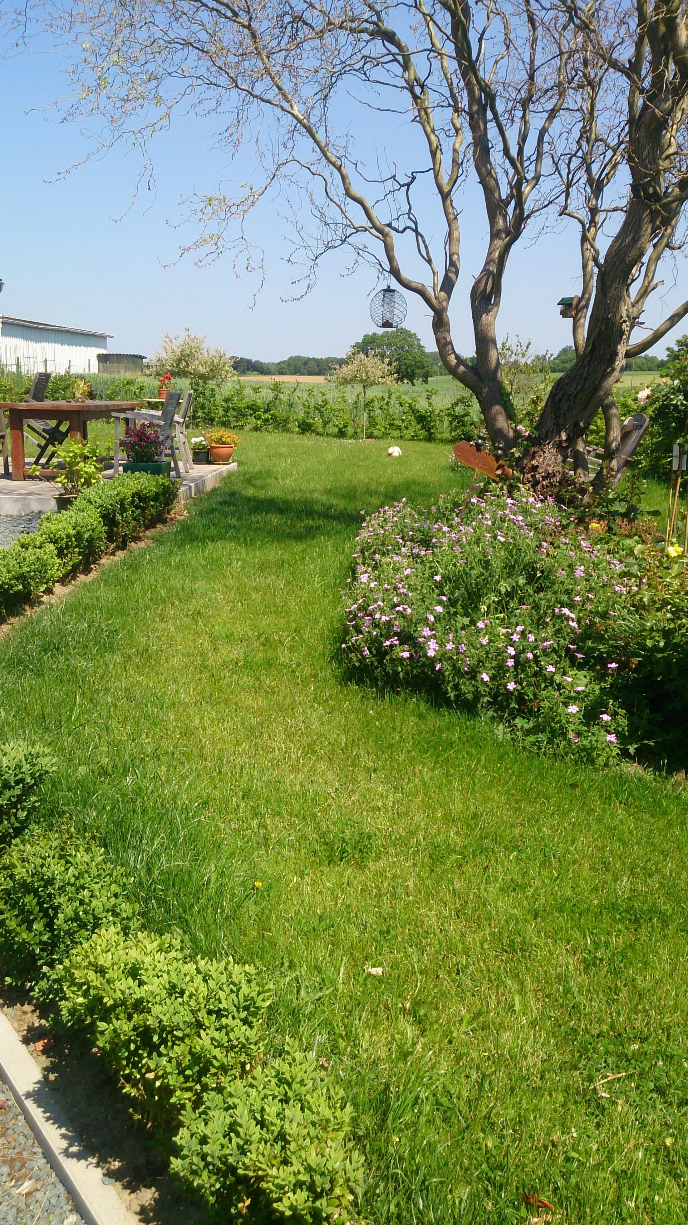 Exemple de jardin excellent exemple de jardin de maison - Exemple amenagement jardin ...