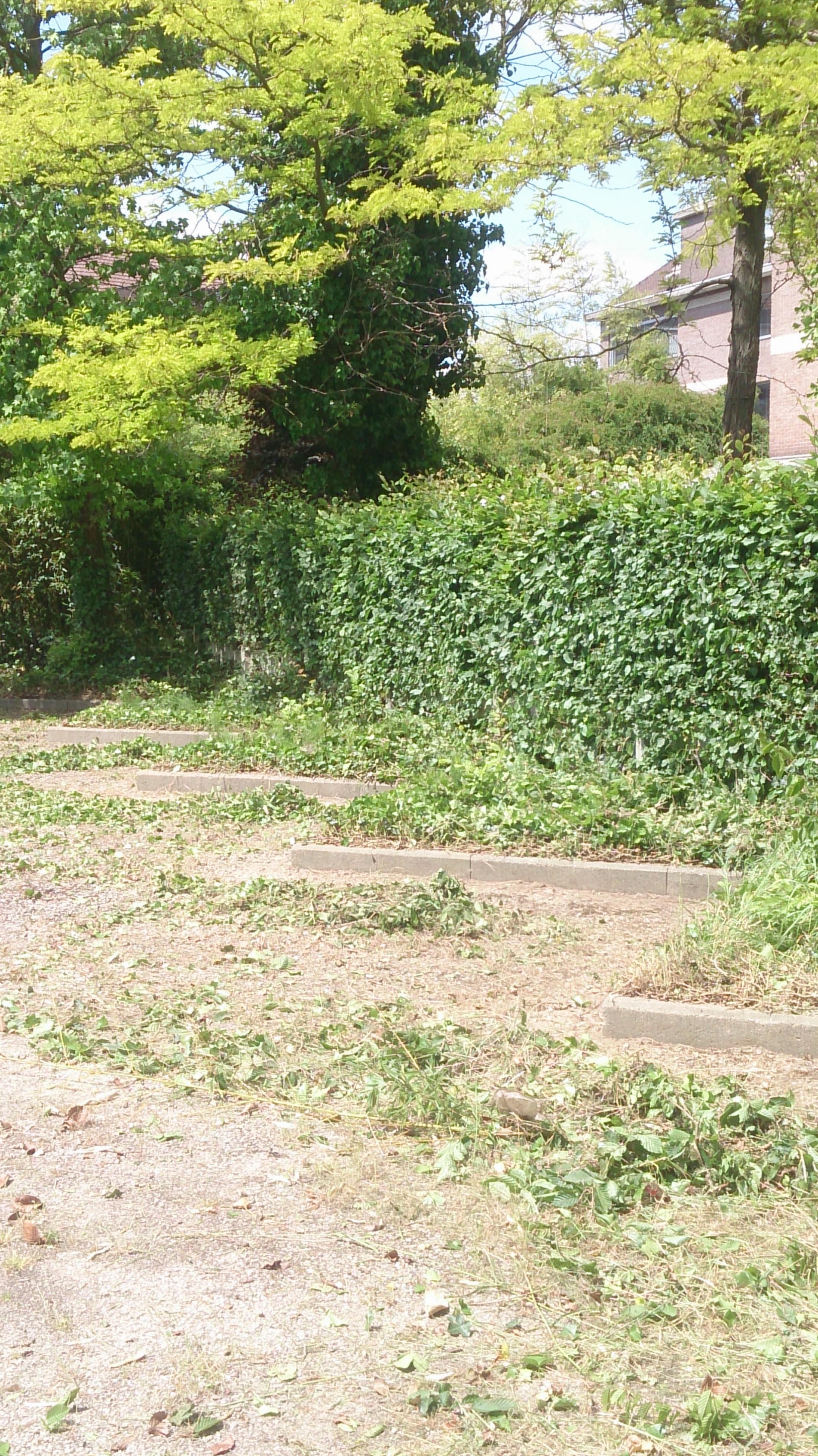 Entreprise archives plaisir vert jardinier paysagiste for Entreprise jardinier paysagiste