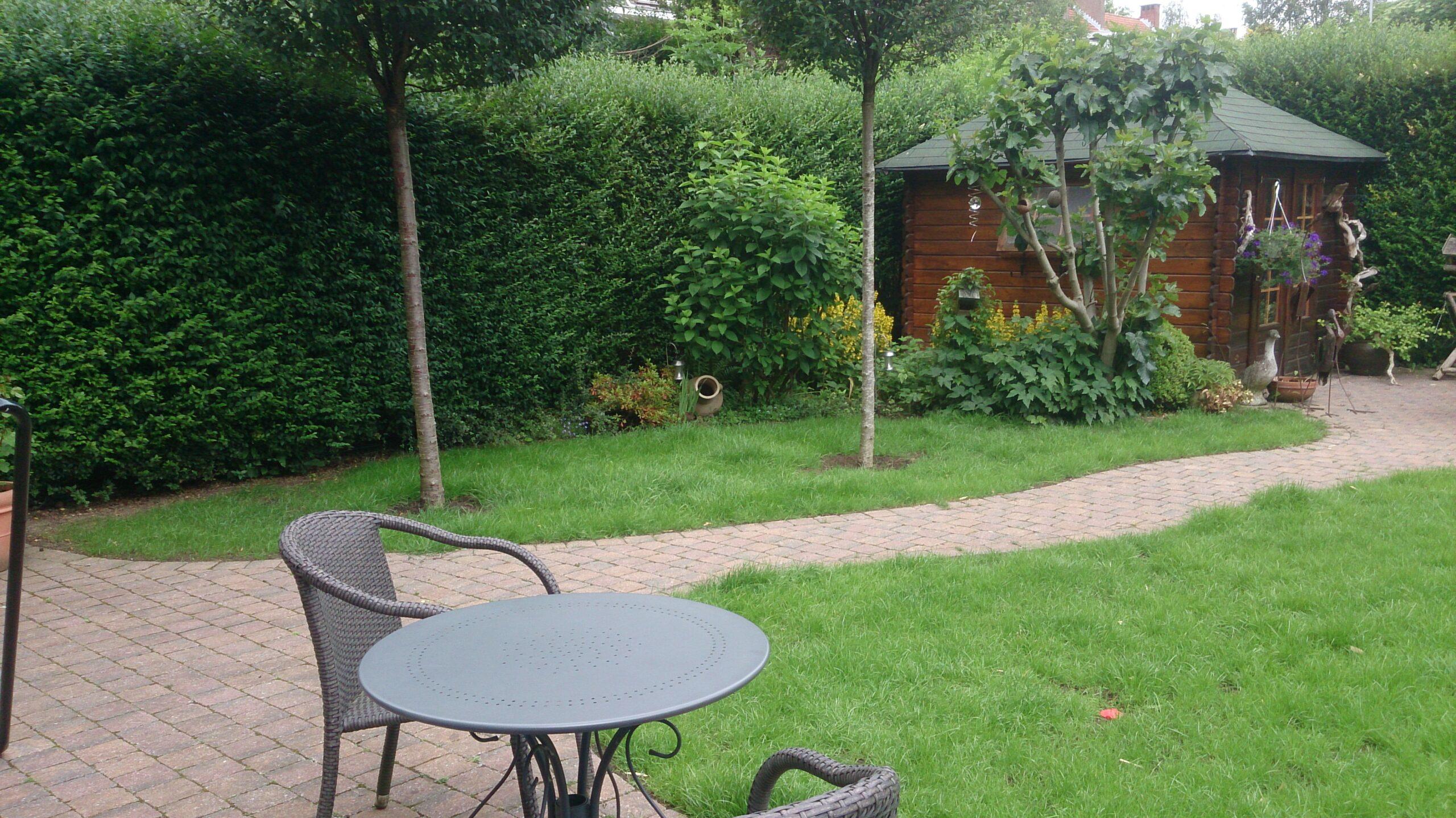 exemple pose d 39 une nouvelle pelouse sur une ancienne plaisir vert jardinier paysagiste et. Black Bedroom Furniture Sets. Home Design Ideas