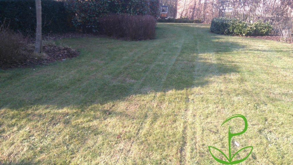 Dsc 0318 1024x576 plaisir vert jardinier paysagiste et for Jardinier paysagiste 91