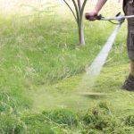 Couper les hautes herbes