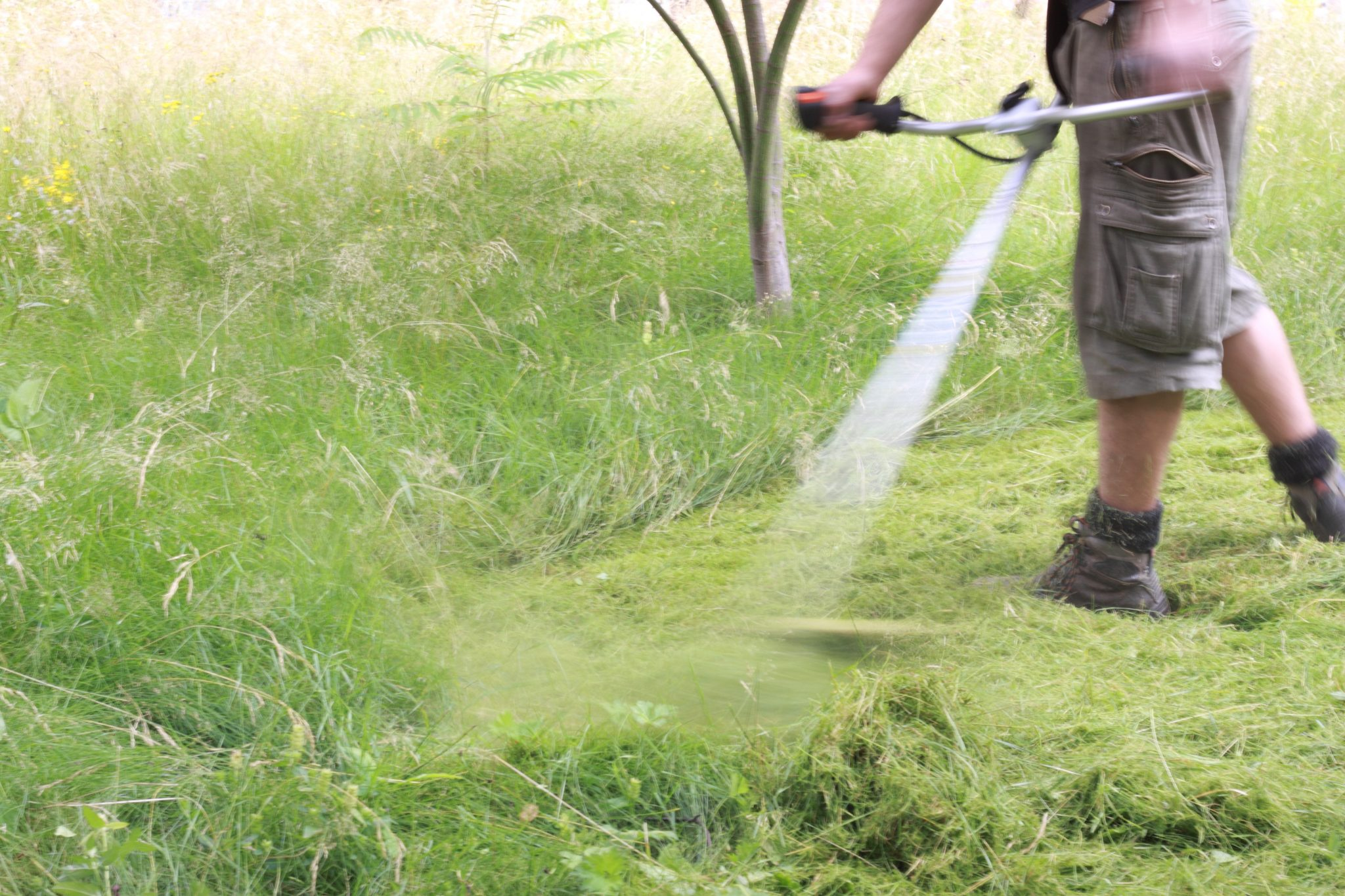 Couper les hautes herbes plaisir vert de bruxelles for Jardinier bruxelles