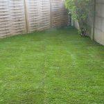 Pose de pelouse en rouleaux