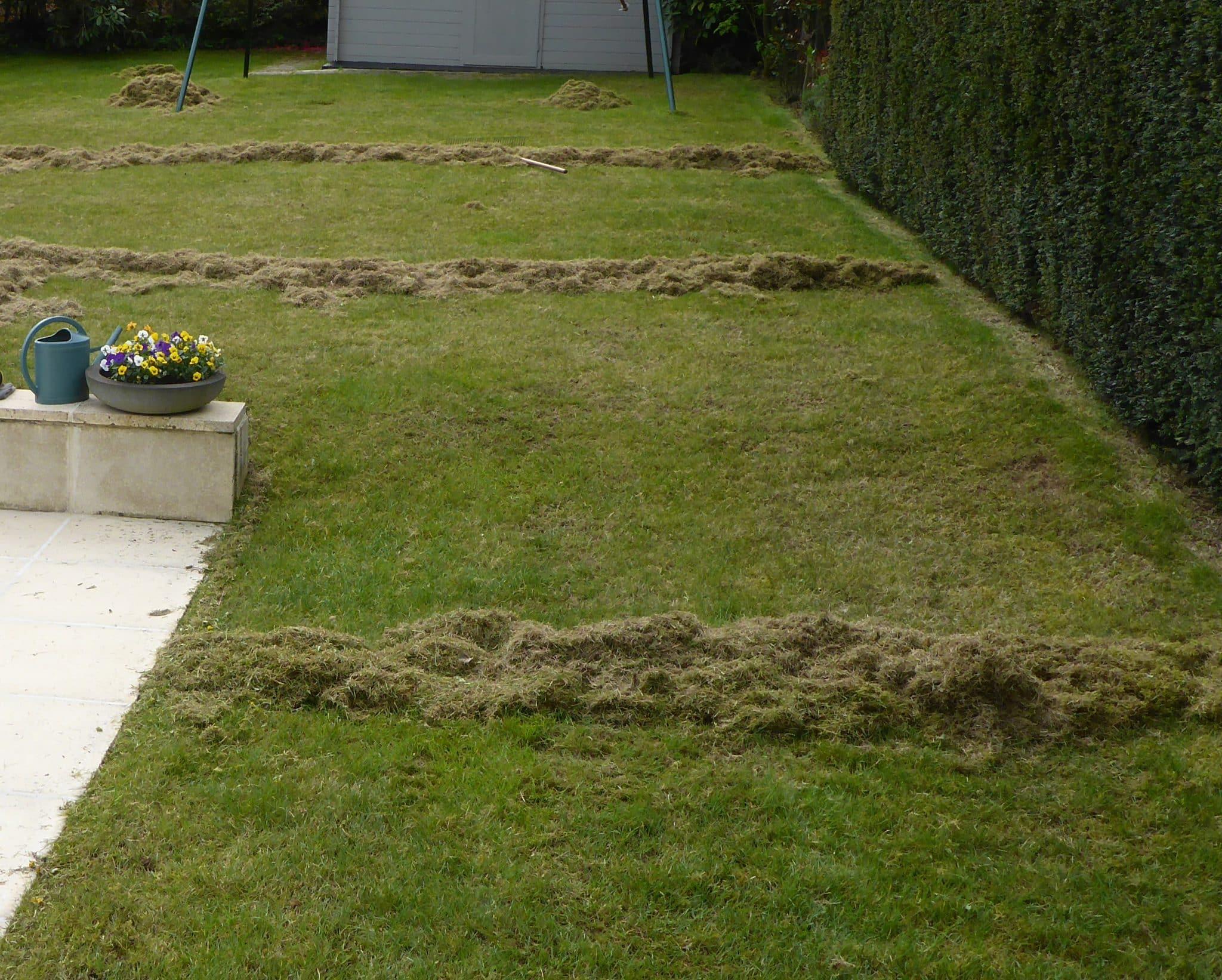 pour une pelouse renouvel e scarifiez la plaisir vert jardinier paysagiste et arboriste. Black Bedroom Furniture Sets. Home Design Ideas