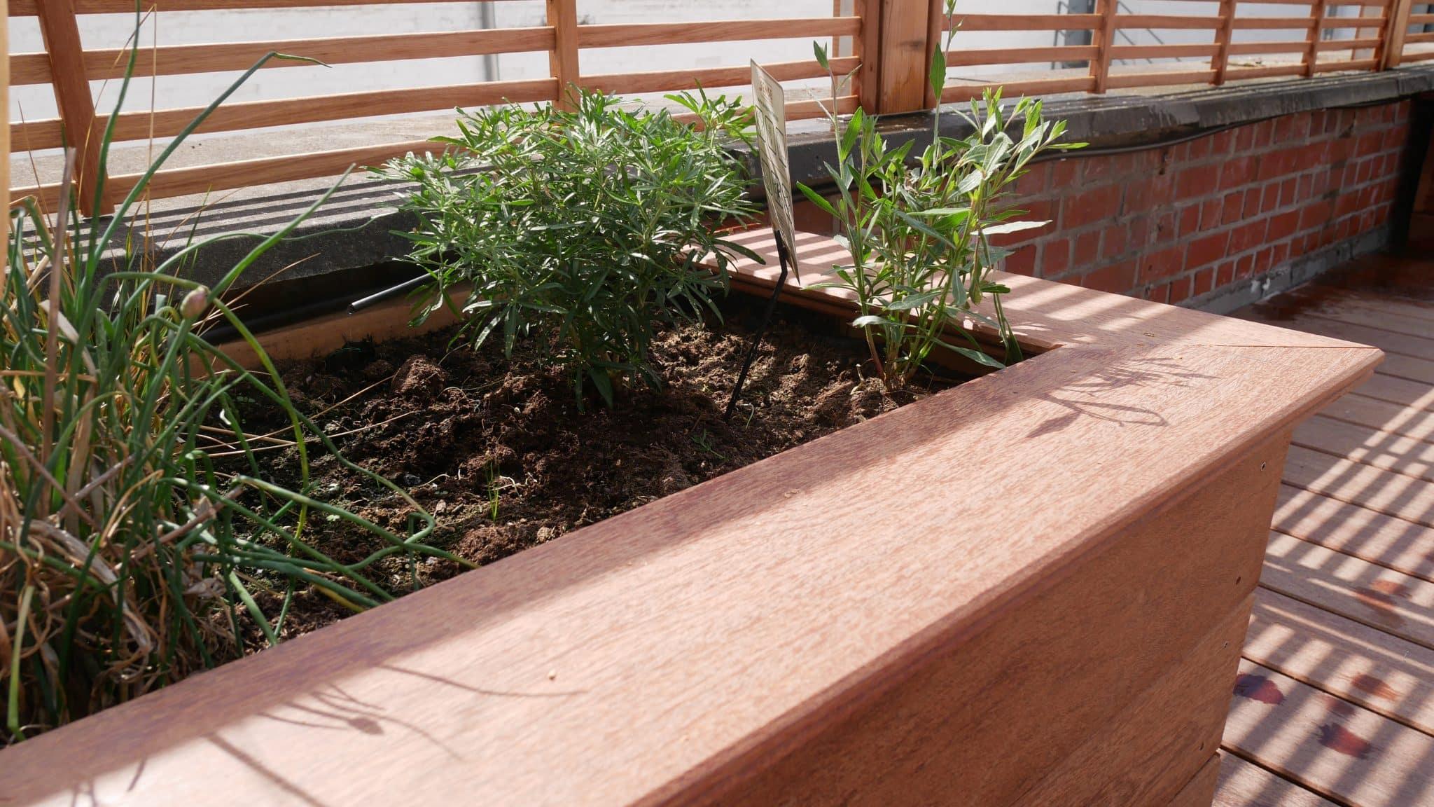 Terrasse en bois cumaru par plots sur toit plaisir vert for Embellir sa terrasse