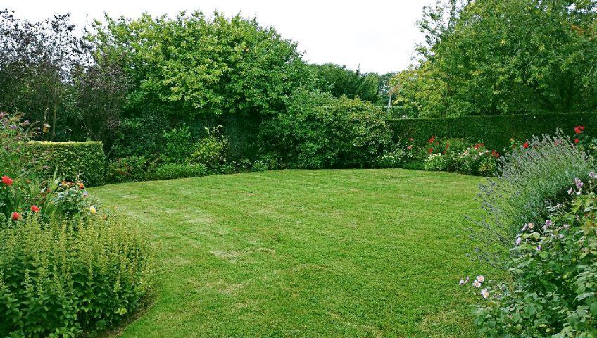Entretenir son jardin plaisir vert jardinier paysagiste for Entretenir son jardin en avril