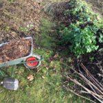 L'hivernage du jardin : le paillage